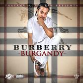 Ice Burgandy - Burberry Burgandy