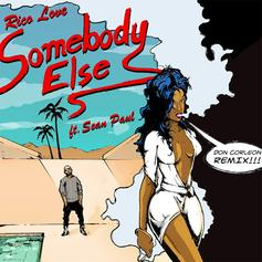 Somebody Else (Remix)
