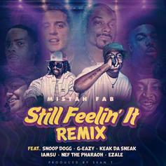 Still Feelin' It (Remix)