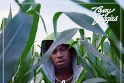 """Official Cover Art Revealed For Casey Veggies' """"Life Changes"""" Mixtape"""