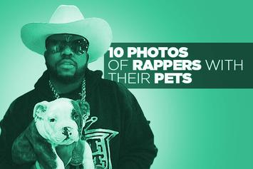 10 Photos Of Rappers With Their Pets