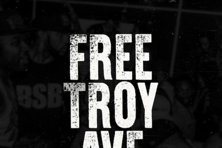 Free Troy Ave artwork